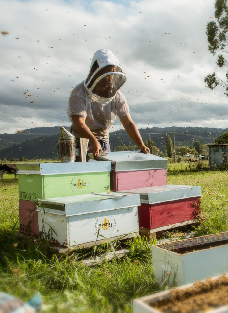 BeeMaori Valley Shoot-Healthy 5