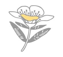 Healthy 5 Honey flower