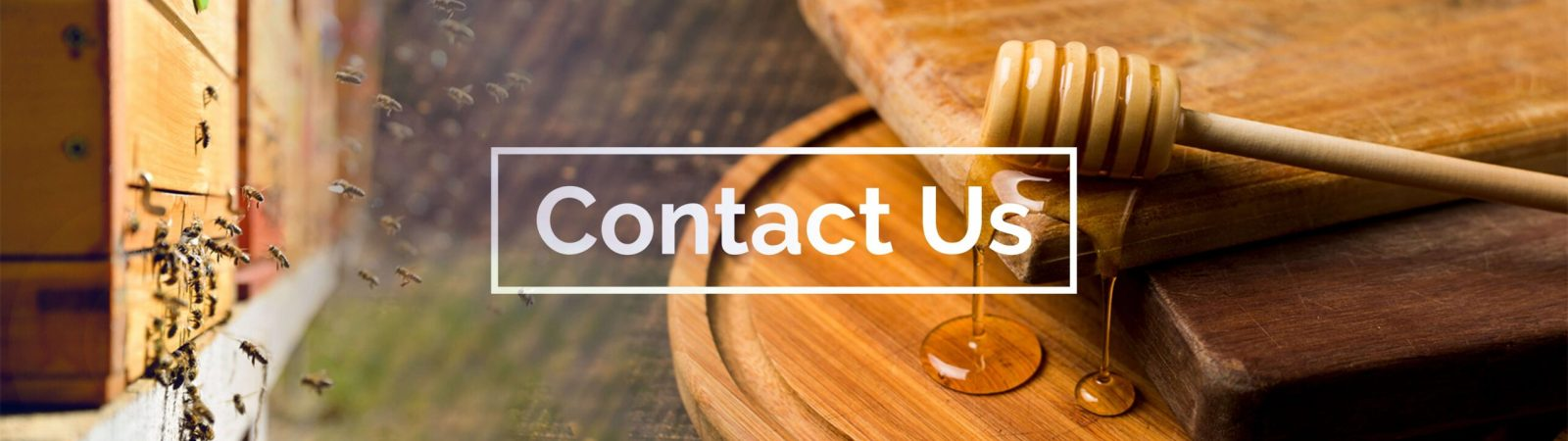Contact Us banner- Healthy 5